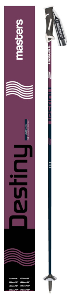 Masters Destiny ski poles on World Cup Ski Shop 1